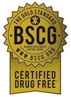marchio e certificazione BSCG